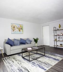 1 or 2 Bedroom Apartments for Rent | Amazing & Pet-Friendly!