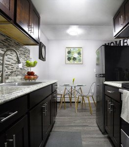 Newly Renovated Pet-Friendly, 1 Bed – 1 Full Bath Apartment for Rent!